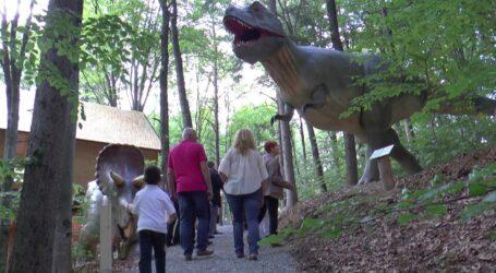 Parcul Brădet din Zalău se transformă în Dino Parc