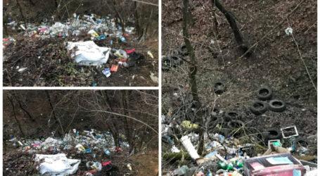 Ăsta-i Sălajul?! Mormane de gunoaie, aruncate într-o vale, chiar lângă un drum cu peisaje spectaculoase