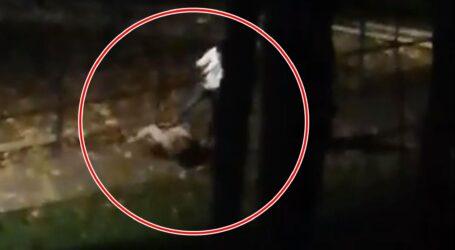 Procurorii cer încă 30 de zile de arest pentru tânărul care și-a bătut cu bestialitate iubita pe o stradă din Zalău