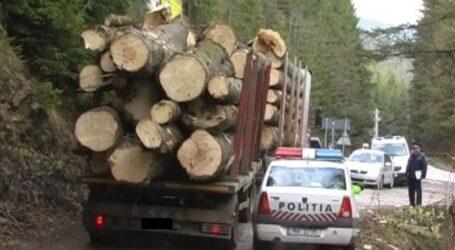 Razie de amploare a polițiștilor în mai multe localități și păduri din Sălaj