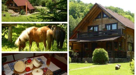 Cum arată cabana din Sălaj unde turiștii pot să călărească ponei, să deguste mâncare tradițională și să facă o baie în ciubăr