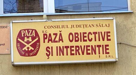 SC Pază Obiective și Intervenție SRL vă urează Sărbători Fericite!