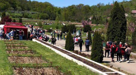 Sute de turiști au trecut pragul astăzi Grădinii Botanice din Jibou, cel mai vizitat loc din Sălaj
