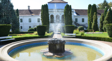 Vânzarea Castelului Wesselenyi din Jibou, afacere cu iz penal?! Revolta unui consilier județean al USR