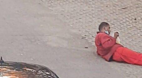 VIDEO. Boschetarul Ciocolată a reapărut în Zalău, la fel de agresiv ca în trecut