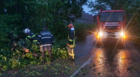 Prăpăd în Sălaj! Furtuna a rupt mai mulți stâlpi de electricitate, iar mai multe drumuri județene au fost BLOCATE
