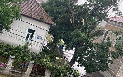 Mai mulți copaci și acoperișuri, rupte de furtună în Șimleu Silvaniei și în comuna Sărmășag