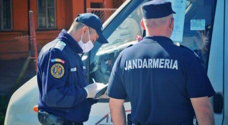 Doi hoți de lemne s-au luat la ceartă cu jandarmii din Jibou, după ce au fost prinși la furat