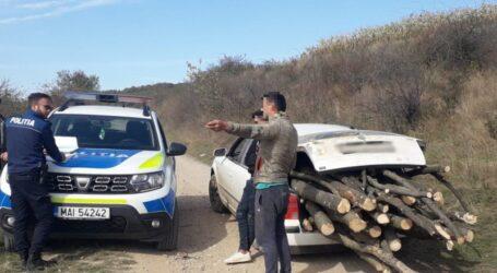 FOTO. Polițiștii din Sălaj au luat în vizor hoții de lemne – ample acțiuni împotriva tăierilor ilegale